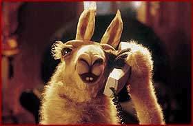 La Llama que llama: ¿Telecom o Telefónica? Una buena estrategia de Redes Sociales hubiera podido resolver el dilema